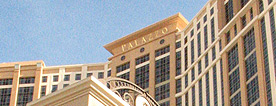 Palazzo Tips, Reviews and Photos